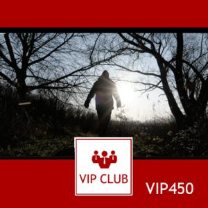 learn polish VIP450