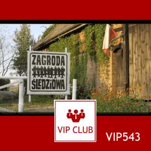 learn polish VIP543