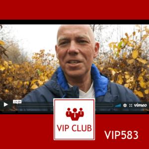 learn polish VIP583