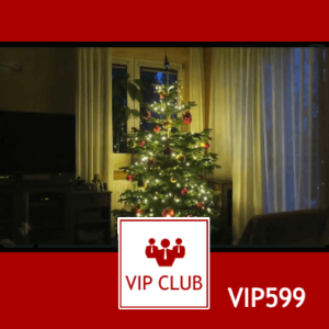 learn polish VIP599