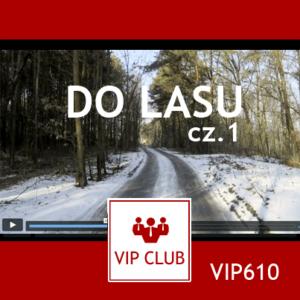 learn polish VIP610