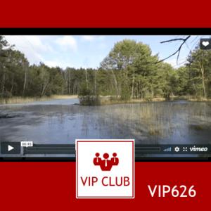 learn polish VIP626