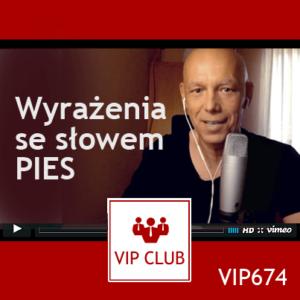 learn polish webinar VIP674