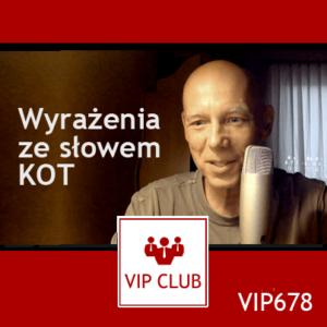 learn polish webinar wyrażenia ze słowem KOT VIP678