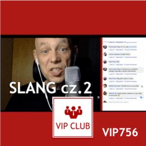 learn polish VIP756 polish slang